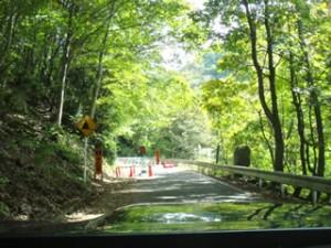 白龍の滝付近から 片側通行